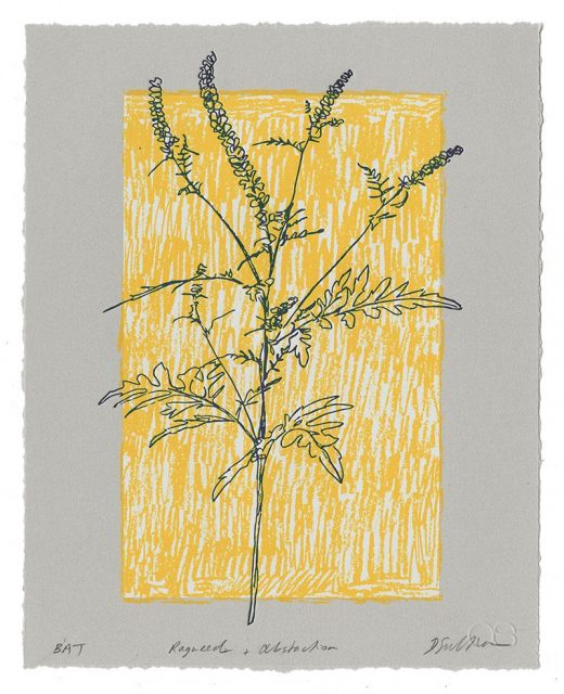 "Derek Sullivan, Ragweed + Abstraction, 2019, letterpress and screenprint, 10"" x 8"""
